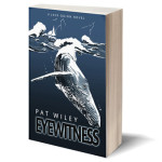 """Eyewitness"" by Pat Wiley, A Jack Quinn Novel"